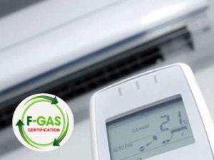 dichiarazione-fgas